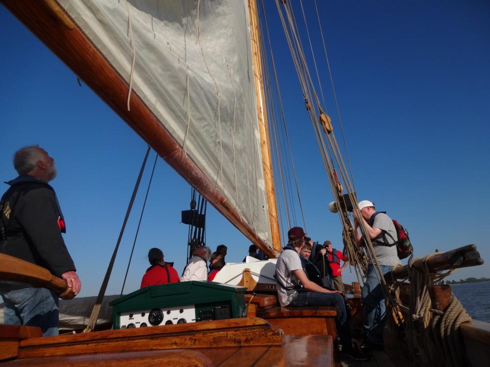 toxy-liegerad-jubilaeum-segeln-auf-der-elbe.JPG