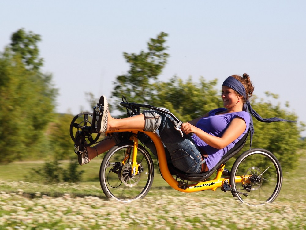 toxy_recumbent_zr_fh_left.3.jpg